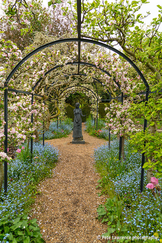Blossom-on-arches-spring